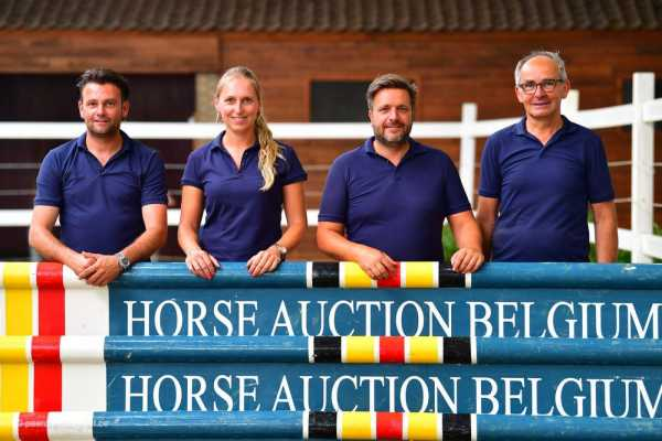 First Online Auction for Horse Auction Belgium